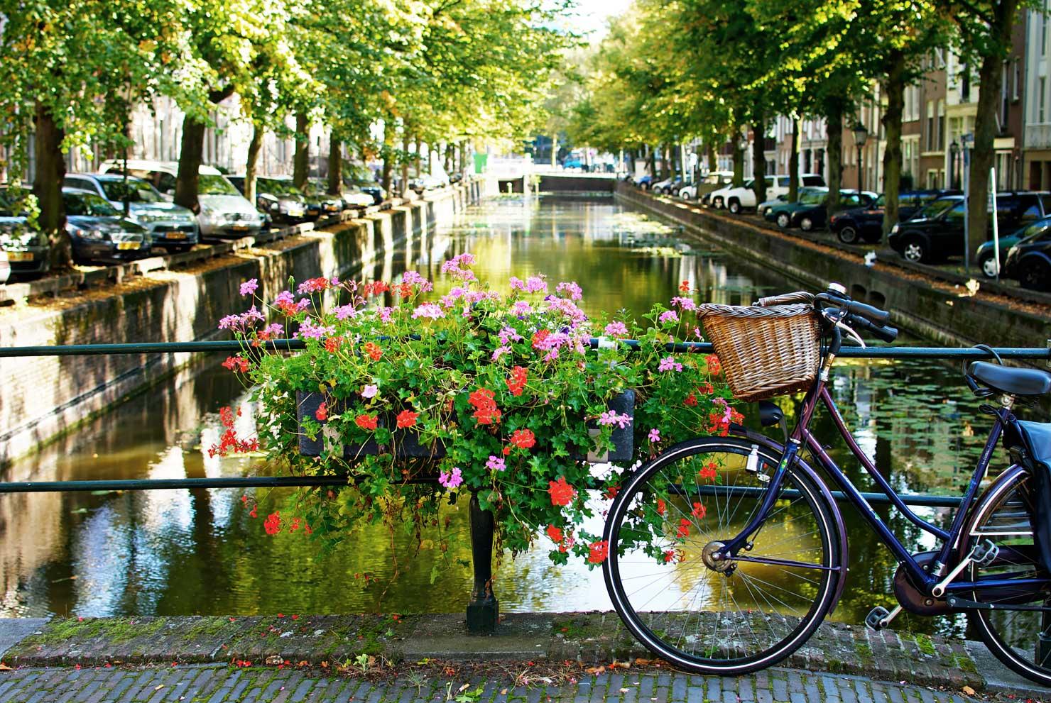 Den Haag- Walking around the City Centre - Urban Pixxels