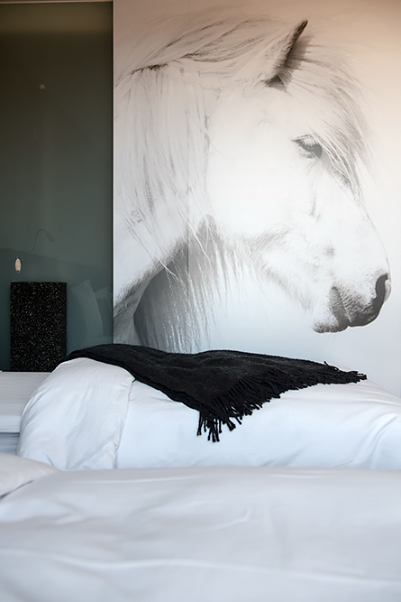 Where to stay in Iceland: ION Hotel, a luxury design hotel near the Golden Circle.